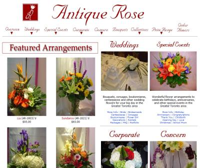 Antique Rose - Toronto Florist