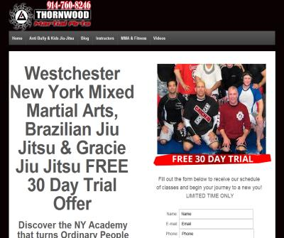 Thai Boxing Training Classes at New York