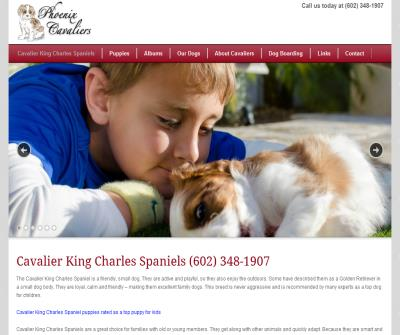 Cavalier King Charles Spaniels in Arizona California Texas Nevada