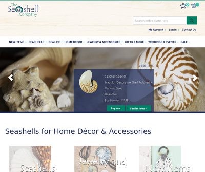 The Seashell Company