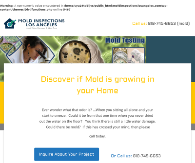 Mold Inspections and mold testing company in Los Angeles