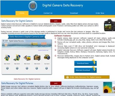 Digital Picture Recovery