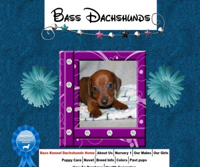 Bass Kennel Dachshunds