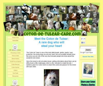 The Complete Coton de Tulear Guide