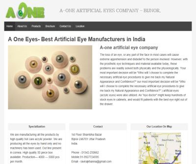 artificial eyes,iris,stockeyes,artificial shell manufacturer,exporter