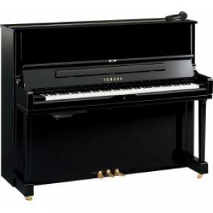 Serenade99 Music Store-http://www.serenade99.com/